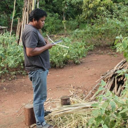 Los campesinos recurren al cultivo de opio para garantizar la alimentación de su familia (Pablo L. Orosa) copia